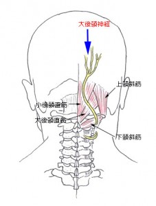 大後頭神経
